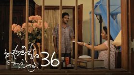 Thanamalvila Kollek | Episode 36 – (2020-05-23) | ITN