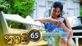 Naadi – Episode 65 – 2020-11-30